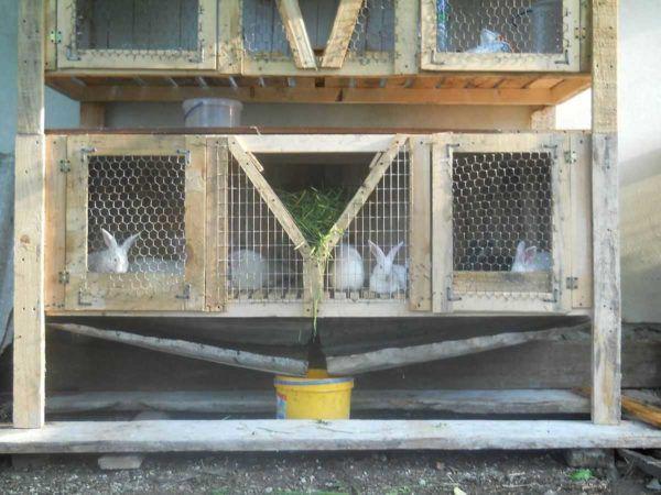 Поддон для сборки кроличьего помета