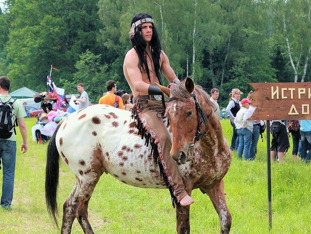 Чубарая лошадь на реконструкции