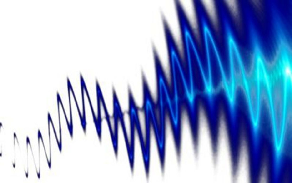 Ультразвуковые волны помогут определить пол уточек