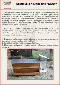 Кормушка-поилка для голубят