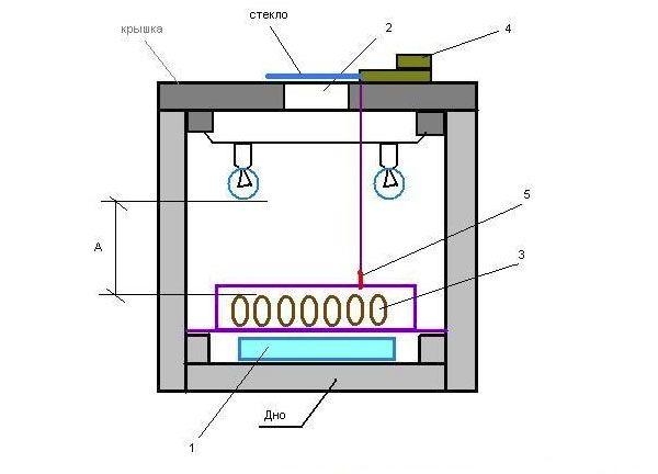 1 – резервуар с водой; 2 – смотровое окно; 3 – лоток с яйцами; 4 – терморегулятор; 5 – датчик