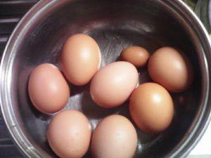 Если мелкие яйца появляются редко, не стоит заострять на этом внимания