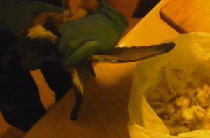 Удаление крыльев