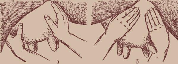 Массаж вымени: а - массаж правой половины, б - массаж левой половины