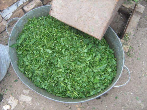 Измельченный зеленый корм для утят