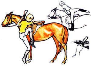 Как правильно садиться на лошадь
