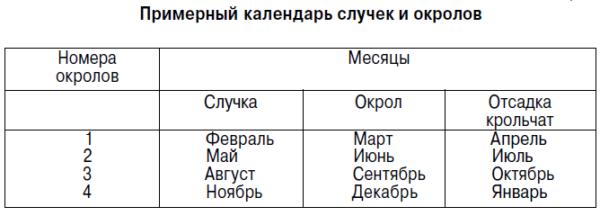 Примерный календарь случек и окролов