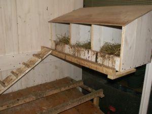 Можно сделать сразу несколько деревянных гнезд, отгородив их друг от друга