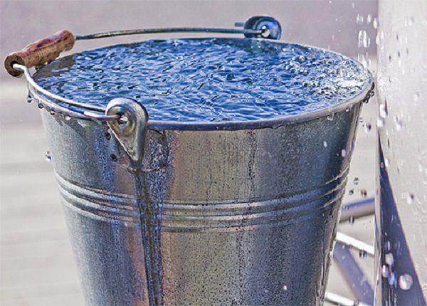 Ведро ледяной воды - действенный воспитательный инструмент