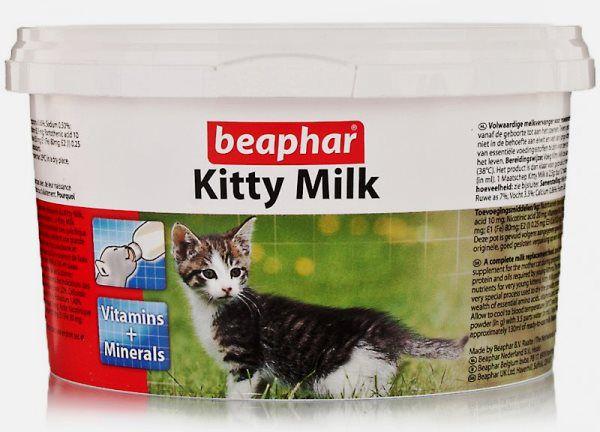 Кормить можно молочными смесями для котят
