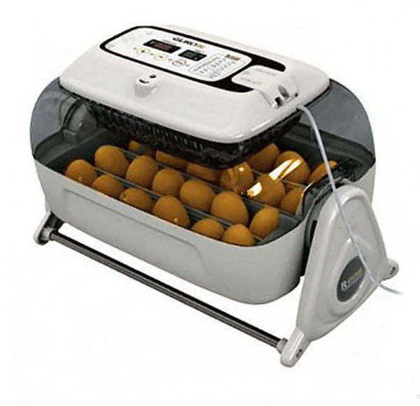 Подготовленный инкубатор для яиц