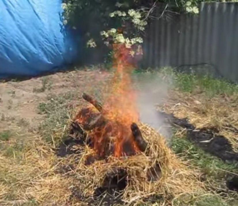 Обжиг соломой