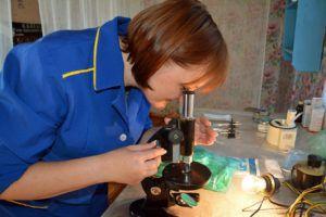 Техник-осеменатор за работой: проверка качества семенного материала