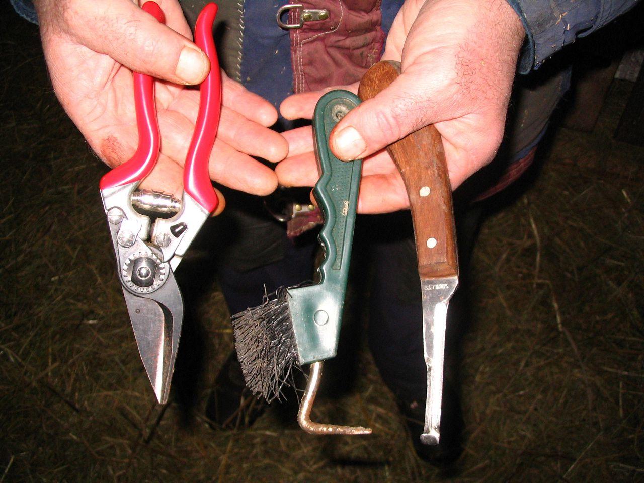 Инструменты для обрезки копыт