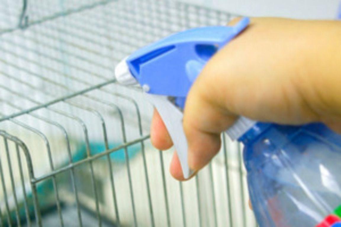 Молочная кислота повсеместно используется для дезинфекции крольчатников