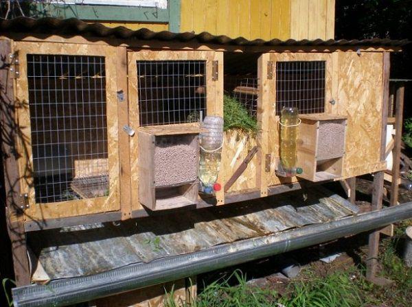 Кроличьи клетки на ферме