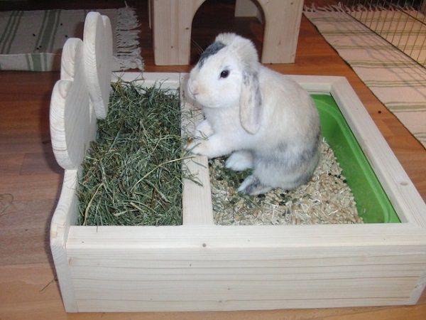 Оригинальная идея туалета для кроликов с отсеком для сена