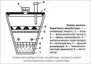Схема малогабаритного инкубатора