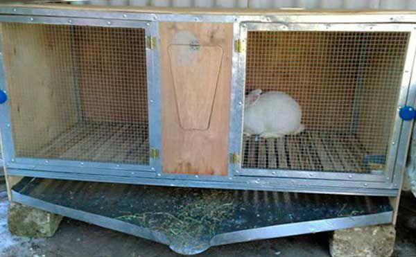 Как сделать поддоны для кроликов 52