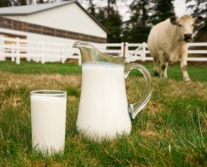 Стакан молока в день - эффективная профилактика мастопатии и онкологии