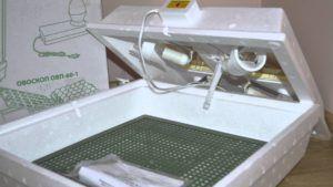 «Квочка МИ-30-1-С» - простейшая разновидность популярного инкубатора