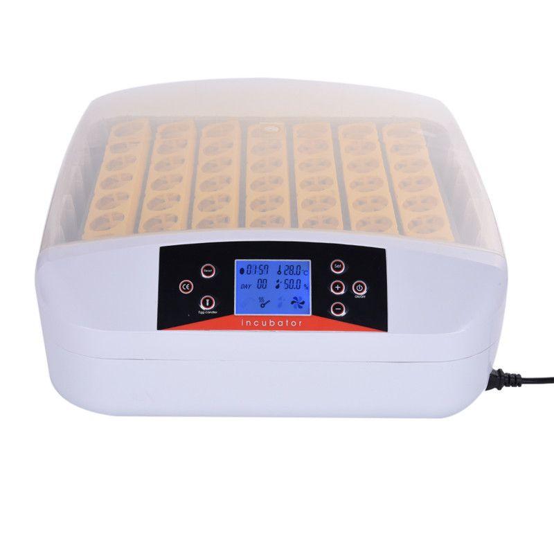Автоматический инкубатор с дисплеем