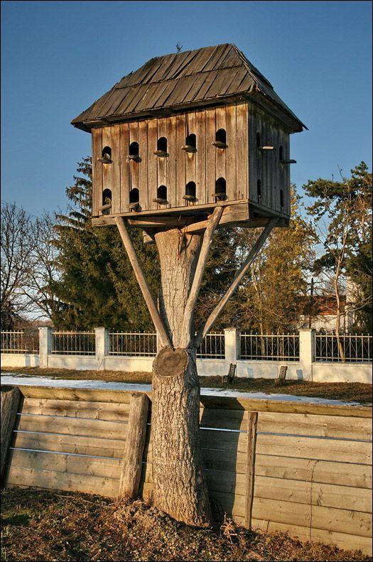 Башенная голубятня на старом дереве