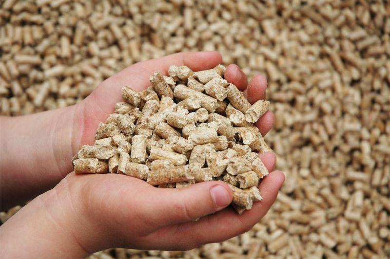 В зимнее время необходимо обогащать рацион зверьков витаминными препаратами и использовать гранулированные корма