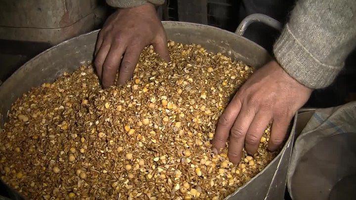 Замачивание зерна