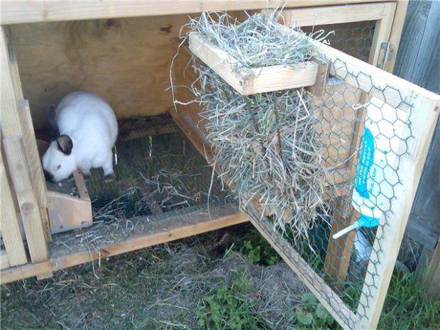 Кормушки в кроличьих клетках