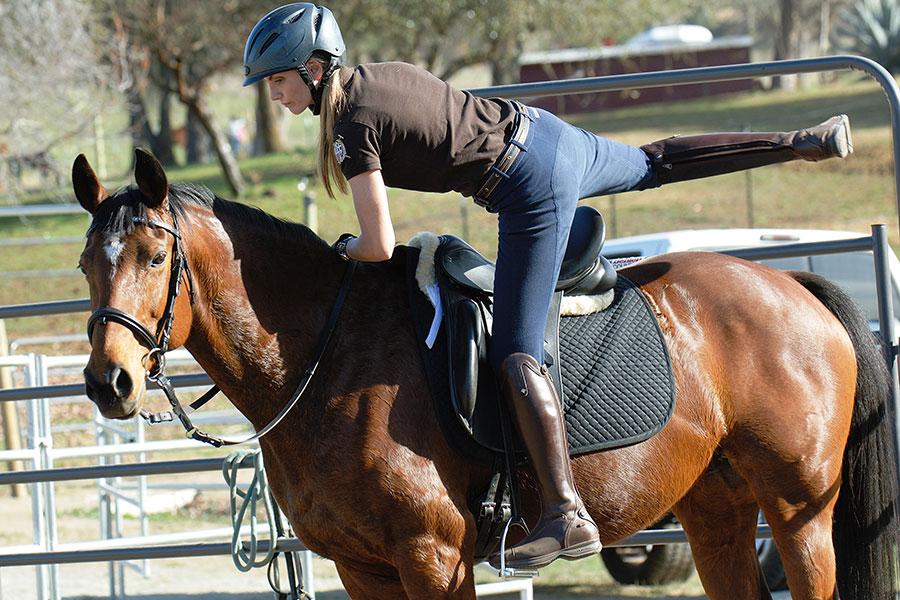 Обучение посадке на лошадь