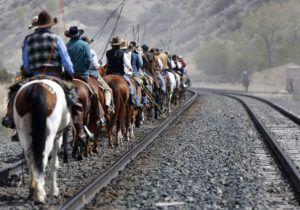 Одно из исторических назначений лошади – транспортное