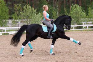 Шпоры – неотъемлемый атрибут конного спорта