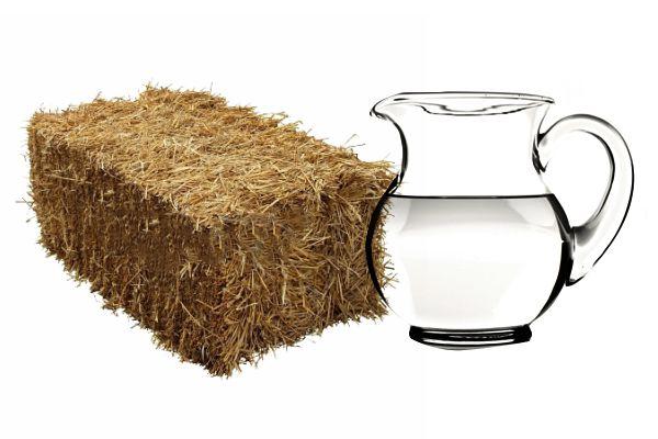 Сразу после отела самку необходимо поддержать подсоленной водой и сеном