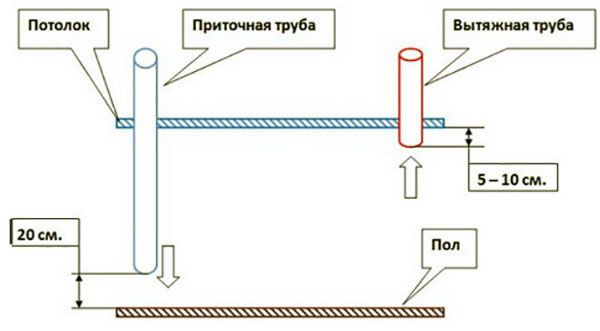 Пример организации вентиляционной системы в курятнике