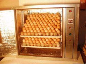 Автоматические инкубаторы для гусиных яиц