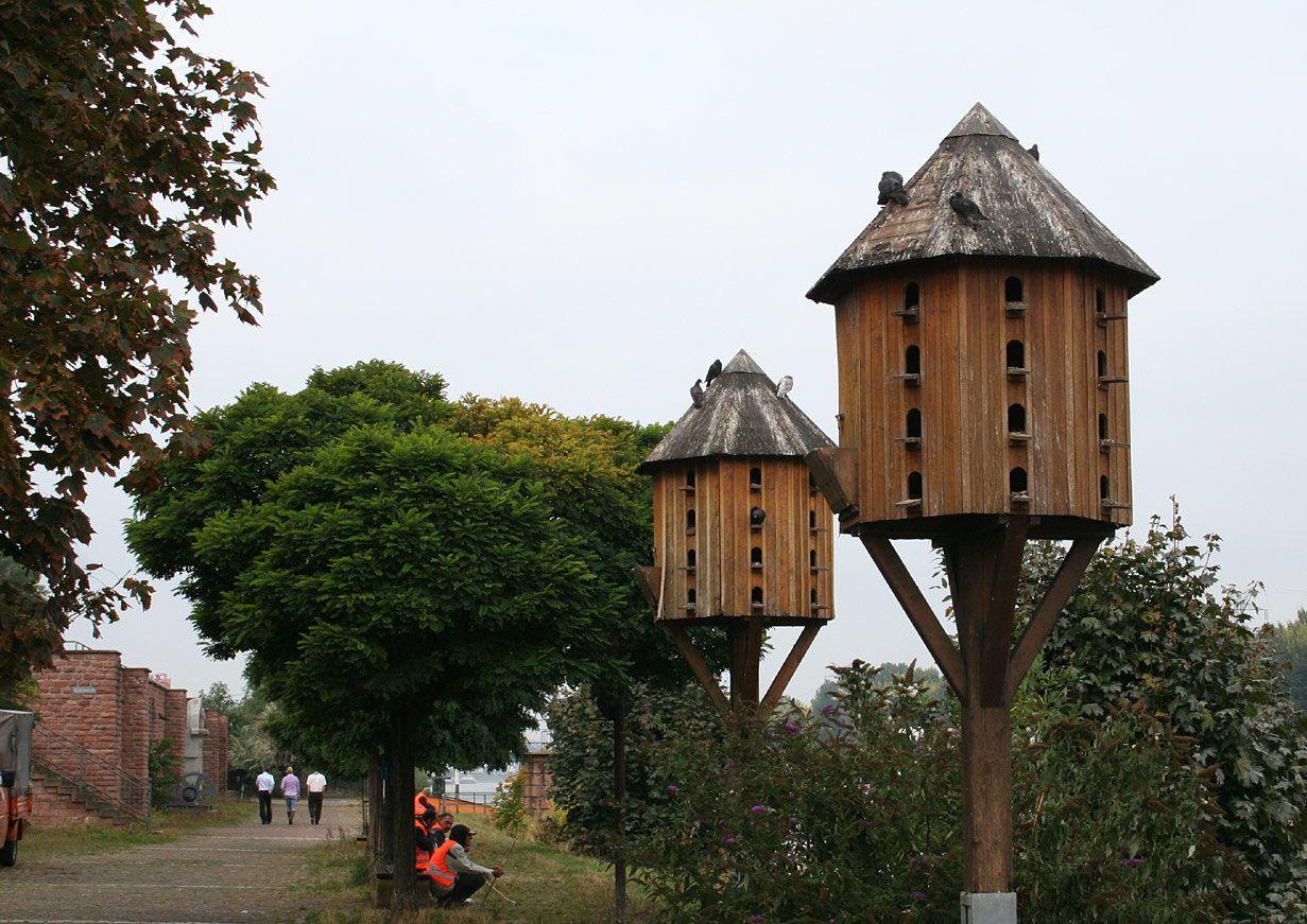 Башенная голубятня в Германии