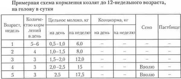 Примерная схема кормления козлят до 12 недель