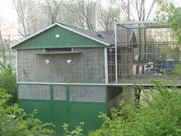 Крыша голубятни должна быть защищена от протечек воды с помощью гидроизоляции