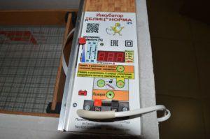 Подготовка инкубатора Блиц Норма к работе