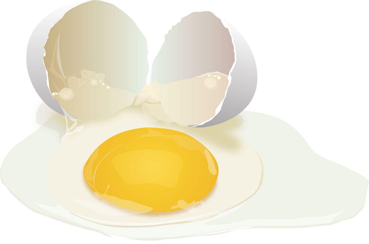 Гораздо в больших количествах протеин содержится в желтке, нежели в белке