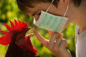 Назначает лечение только ветеринарный врач
