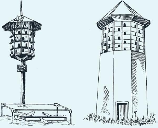 Фундаментальные башенные голубятни