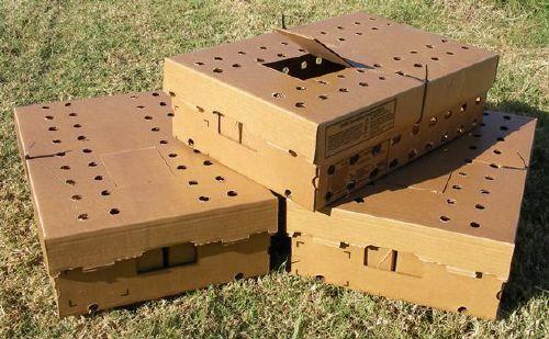 Перепелов необходимо перевозить в коробках, сделанных из картона, с дырочками для вентиляции