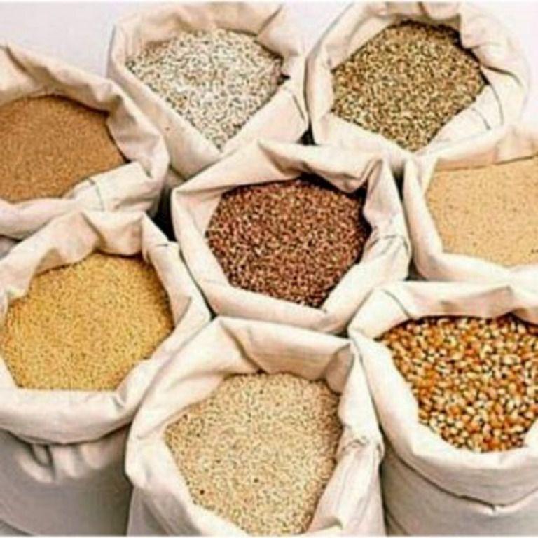 Для разведения кур породы Тетра необходимо большое количество кормов