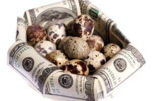 Доходы и расходы от перепелиного бизнеса