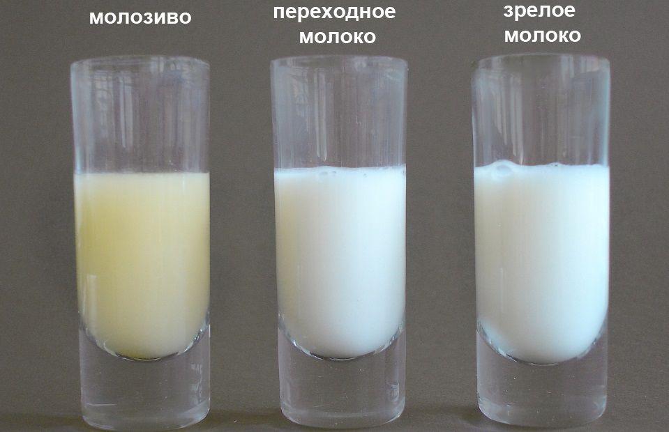 Три разновидности молока