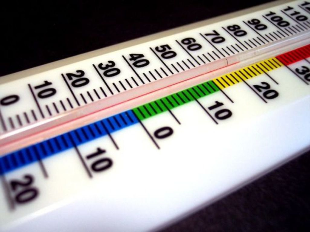 Отклонения от принятого температурного режима могут привести к гибели всех эмбрионов