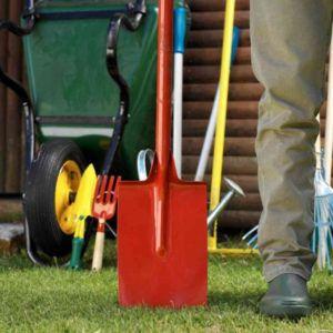 Каждый день чистить стойло и прилегающие зоны