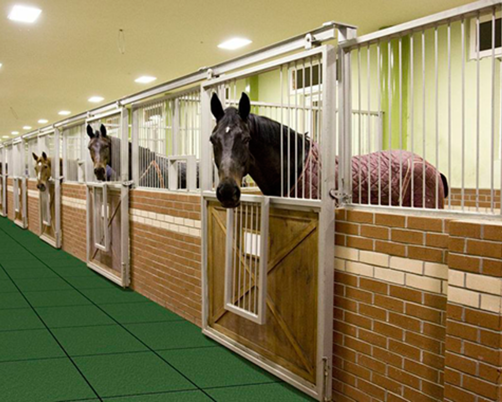 Двухсекционные двери удобны для лошадей.